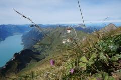 Grüße aus den Schweizer Bergen