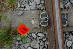 In den Gleisen