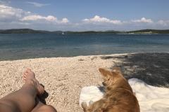 Wir genießen Kroatien!