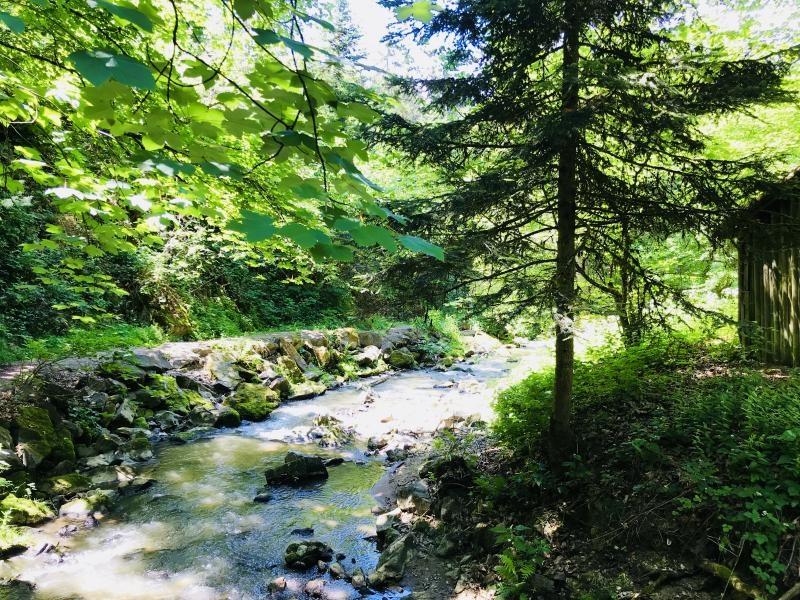 Unterwegs im Perlbachtal bei Mitterfels
