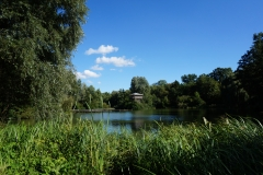 Naturwelt