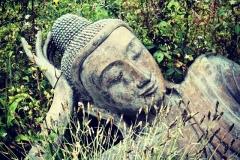Buddhaystyle