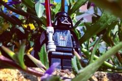 Darth Vader im Urlaub