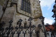 Regensburger Einblicke